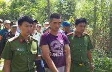 Ai là kẻ chủ mưu hạ độc rừng thông ở Lâm Đồng?