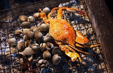 Những đặc sản hiếm có khó tìm ở đất rừng U Minh Cà Mau