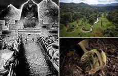 Nhiều loài tuyệt chủng sống dậy ở 'Thành phố của Thần Khỉ'