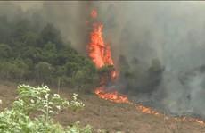 Đang cháy rừng ở Quảng Bình, hàng trăm cán bộ được huy động dập lửa