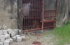 Vụ hổ cắn lìa tay người: Đề nghị thu hồi giấy phép nuôi hổ