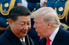 Chủ tịch Trung Quốc Tập Cận Bình: 'Ông Trump là bạn tôi'