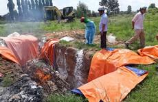 Đồng Nai: Thêm một huyện xuất hiện dịch tả heo châu Phi