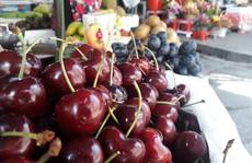 Cherry Mỹ ồ ạt về Việt Nam với giá rẻ