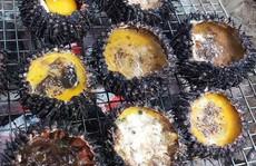 Ghẹ Hàm Ninh, nhum biển và 6 món hải sản ăn không chán ở Phú Quốc