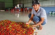 Nhiều loại nông thủy sản tăng giá trở lại