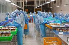 Doanh nghiệp 'xắn tay' khai thác EVFTA