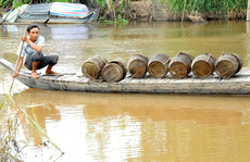 Nước Mê Kông thấp kỷ lục, ĐBSCL lo mất lũ