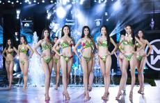 Cuộc thi Hoa hậu Thế giới Việt Nam: Đề cử 5 gương mặt 'Người đẹp biển'