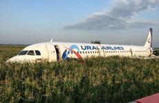 Máy bay tông vào đàn chim, 23 người bị thương