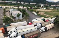Sớm giải tỏa 500 container thanh long ùn ứ ở Lào Cai