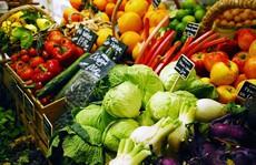 Lỗ hổng trong hệ thống cấp phép organic ở Mỹ