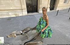 'Họa mi' Celine Dion gây sốc với loạt ảnh quái lạ