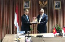 Đề xuất kết nối hàng không, hàng hải Việt Nam - Indonesia