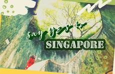 Từ 'mưa trong nhà' đến 'nấc thang lên thiên đường', ra mà xem Singapore ngát xanh này!