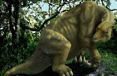 Phiên bản 'quái thú' cổ xưa của 4 sinh vật hiện đại hiền lành