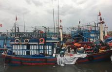 Quảng Bình: Tàu cá bị sóng đánh chìm khi vào trú bão, 2 thuyền viên gặp nạn