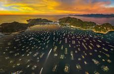 Việt Nam đẹp ngỡ ngàng với những bức ảnh nhìn từ trên không