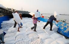 Gạo Việt Nam tìm cơ hội trong khó khăn