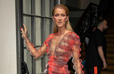 Bị chê gầy gò, 'họa mi' Celine Dion phản pháo