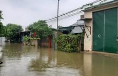 Hàng loạt trường học ở Nghệ An và Hà Tĩnh hoãn khai giảng do mưa lũ