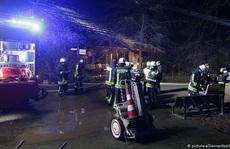Đức: Pháo hoa giao thừa làm cháy và chết hết khỉ ở khu bảo tồn