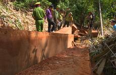 Vụ điều công an khác địa bàn bắt gỗ lậu: Khởi tố 4 cán bộ bảo vệ rừng
