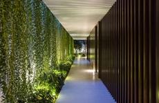 Nhà hộc kéo được bao phủ bởi 60% cây xanh và mặt nước