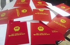 Chủ tịch tỉnh Bình Định yêu cầu điều tra các đường dây làm giả sổ đỏ