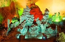 Giám đốc Trung tâm Du lịch Phong Nha - Kẻ Bàng bất ngờ xin thôi việc