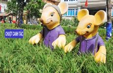 Ngắm những chú chuột làm nông dân ở đường hoa Xuân lớn nhất miền Tây