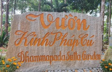 CLIP: Ngắm vườn kinh đá độc đáo của ngôi chùa nằm bên cạnh dòng sông Hậu