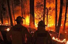 Gần 50 độ C, Úc trở thành nơi nóng nhất Trái đất
