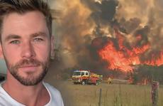 'Thần sấm' Chris Hemsworth quyên 23 tỉ đồng khắc phục cháy rừng ở Úc