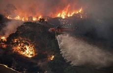Cháy rừng ở Úc: Lời cảnh báo cho toàn thế giới