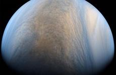 Hệ Mặt Trời có 'trái đất thứ 2', bị Sao Mộc phá hủy
