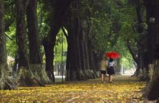 Mưa mùa thu