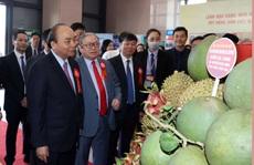 Tin tưởng vào giai cấp nông dân Việt Nam tự cường, sáng tạo