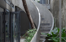 Ngôi nhà có cầu thang 'ôm cây'
