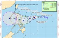 Một bão, một áp thấp nhiệt đới đang hoạt động gần Philippines