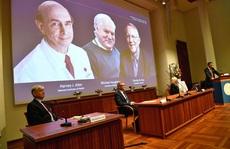 Giải Nobel Y học 2020: Tôn vinh khám phá về virus viêm gan C