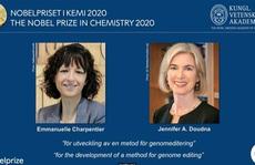 Giải Nobel Hóa học 2020 tôn vinh phương pháp chỉnh sửa gien