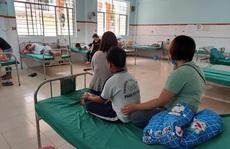 Đồng Nai: Nhiều học sinh bị ong vò vẽ chích nhập viện