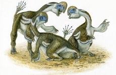 Xuất hiện 4 'quái thú sa mạc' nửa khủng long, nửa chim, cánh mọc 2 ngón