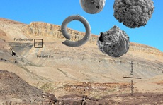 Choáng váng sinh vật hình… phôi thai từ 'thế giới đã mất' 570 triệu năm trước