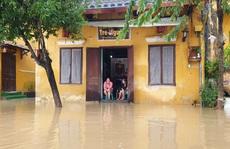 Quảng Nam mưa lớn, nước sông đang lên, nhiều thủy điện xả lũ