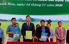 Thanh Hóa: Cung cấp gạo sạch cho đoàn viên