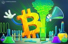 Nhà kinh tế nổi tiếng thừa nhận có thể nghĩ sai về Bitcoin