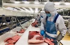 Sản xuất nhiều mặt hàng tại TP HCM tăng mạnh