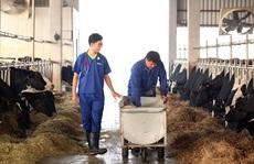 Đài Loan mở thêm 7 nghề cho lao động nước ngoài